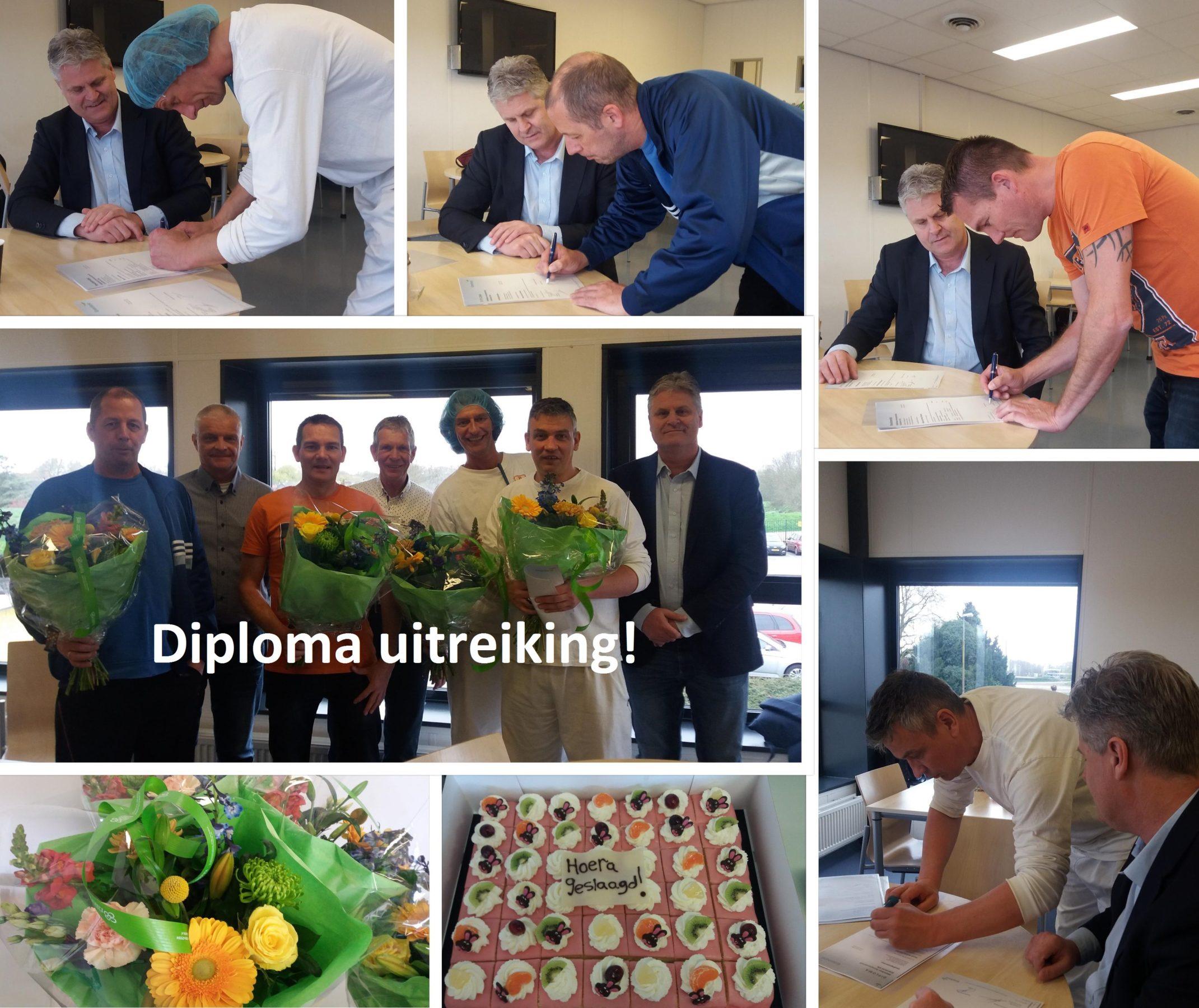 Procesoperator A diploma